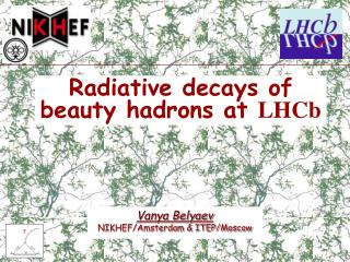 Radiative decays of beauty hadrons at  LHCb