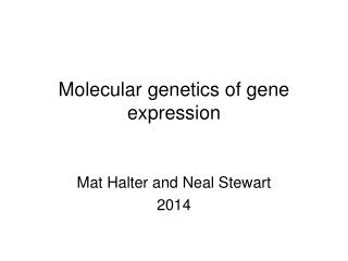 Molecular genetics of gene expression