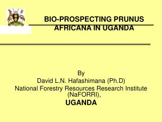 BIO-PROSPECTING PRUNUS AFRICANA IN UGANDA