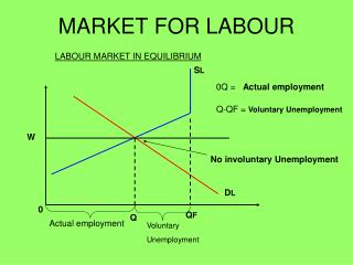 MARKET FOR LABOUR