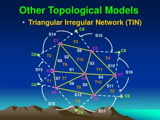 Other Topological Models