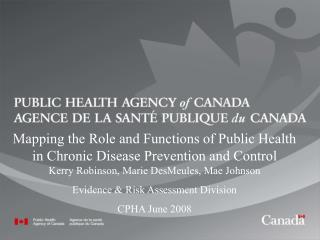 Mapping the Role and Functions of Public Health in Chronic Disease Prevention and Control