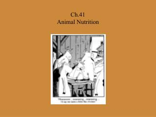 Ch.41  Animal Nutrition