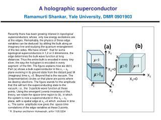 A holographic superconductor Ramamurti Shankar, Yale University, DMR 0901903