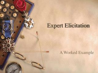 Expert Elicitation