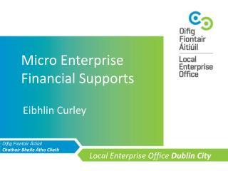 Micro Enterprise Financial Supports