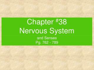 Chapter  # 38 Nervous System