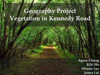 Geography Project Vegetation in Kennedy Road