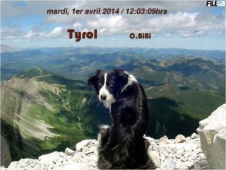 Tyrol                 C.BiBi
