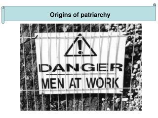 Origins of patriarchy
