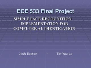 ECE 533 Final Project
