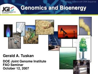 Genomics and Bioenergy