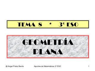 GEOMETR�A PLANA