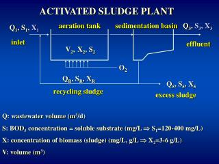 ACTIVATED SLUDGE PLANT