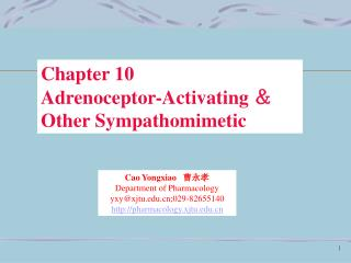Chapter 10 Adrenoceptor-Activating  & Other Sympathomimetic