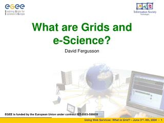 What are Grids and  e-Science?