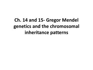 Ch. 14 and 15-  Gregor  Mendel genetics and the chromosomal inheritance patterns