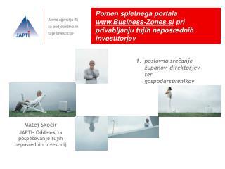 Pomen spletnega portala  Business-Zones.si  pri privabljanju tujih neposrednih investitorjev