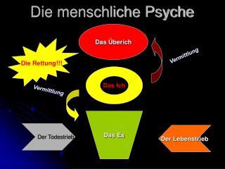 Die menschliche Psyche