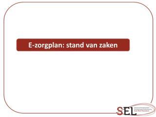 E-zorgplan: stand van zaken