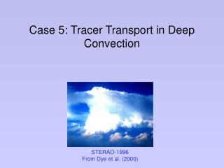 Case 5: Tracer Transport in Deep Convection