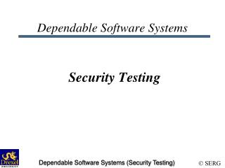 Dependable Software Systems Security Testing