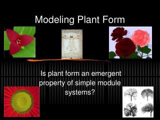 Modeling Plant Form