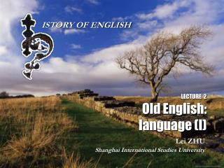 LECTURE  2 Old English: language (I)