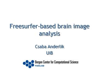 Freesurfer-based brain image analysis