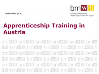 Apprenticeship Training in Austria