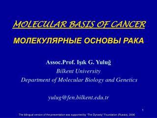 Cellular Basis of Cancer Клеточные основы рака