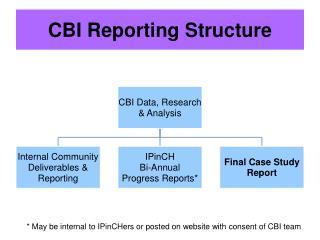 CBI Reporting Structure