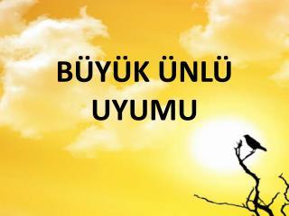 B�Y�K �NL� UYUMU