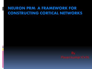 Neuron PRM: A Framework for Constructing Cortical Networks