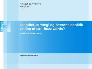 Identitet, strategi og personalepolitik -  endnu et sæt  Buzz words? Personalepolitisk Udvalg