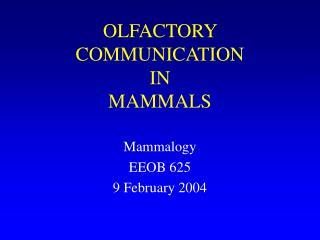 OLFACTORY COMMUNICATION  IN  MAMMALS