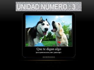 UNIDAD NUMERO : 3