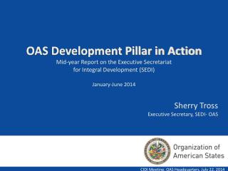 CIDI Meeting. OAS Headquarters. July 22, 2014