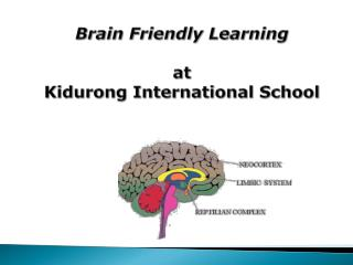 Brain Friendly Learning  at Kidurong International School
