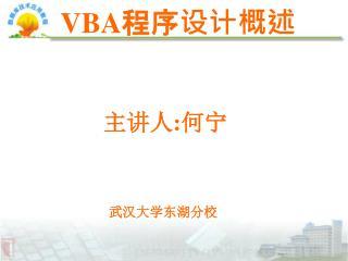 VBA 程序设计概述