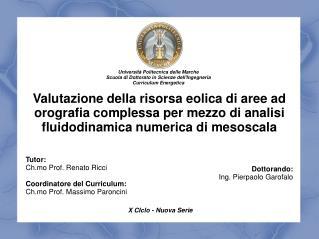 Tutor: Ch.mo Prof. Renato Ricci Coordinatore del Curriculum: Ch.mo Prof. Massimo Paroncini