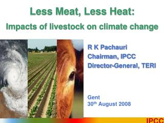 Less Meat, Less Heat: Impacts of livestock on climate change