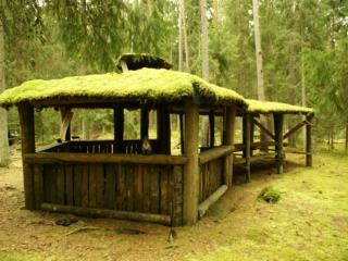 88 91 Naturbruksgymnasium, Stora Segerstad 91 Egen firma, skogssk tsel 92 Skotarf rarkurs V rmland 92 Skotarf rare, Mini