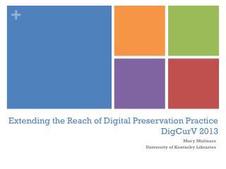Extending the Reach of Digital Preservation Practice DigCurV  2013