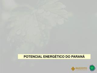 POTENCIAL ENERGÉTICO DO PARANÁ