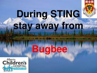 During STING  stay away from Bugbee