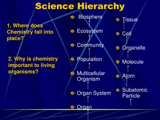 Science Hierarchy