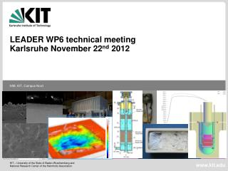 LEADER WP6 technical meeting  Karlsruhe November 22 nd  2012