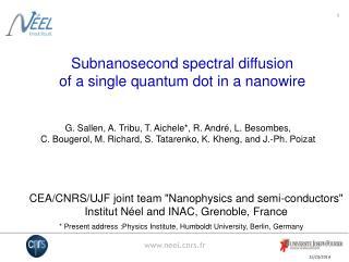 Subnanosecond spectral diffusion of a single quantum dot in a nanowire