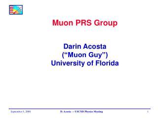 Muon PRS Group Darin Acosta (�Muon Guy�) University of Florida